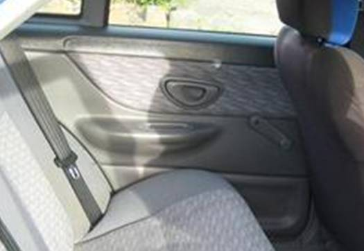 EL Falcon_rear door trim detail.jpg