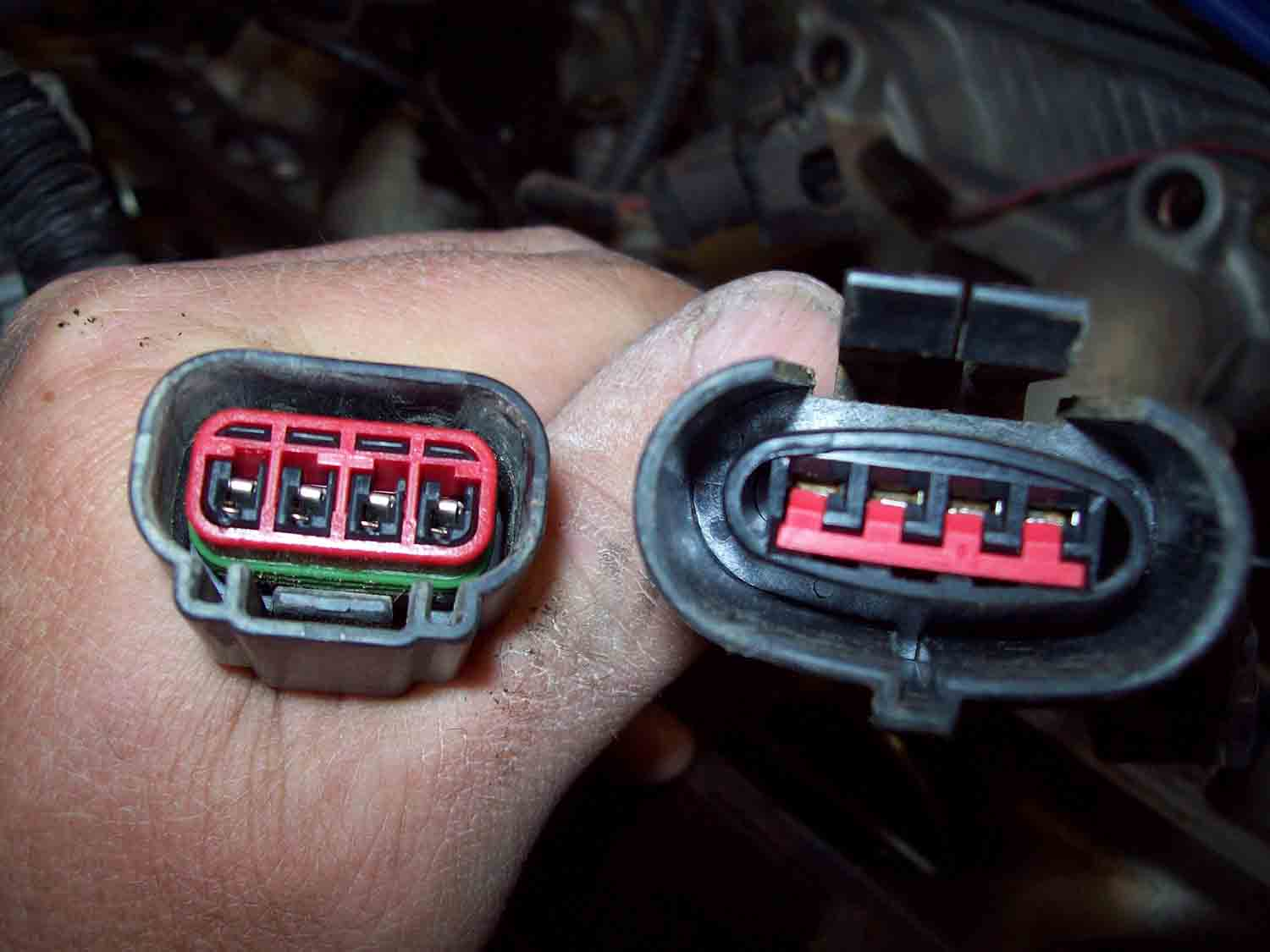 au-ef coil pack plugs.jpg