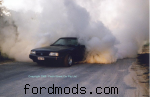 XR9UTE burnout