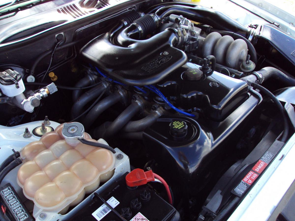 EF Fairmont Series I - Engine Bay